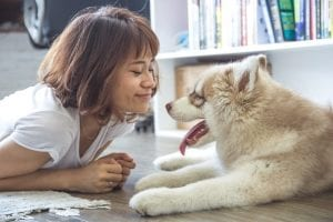 dog affects mental health
