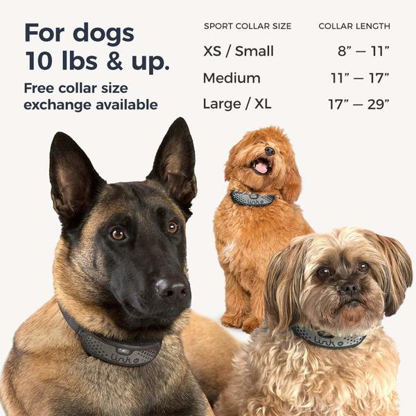 link akc smart collar for dogs