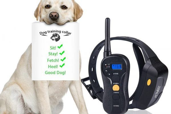 Pethree Remote Controlled Dog Training Collar Review