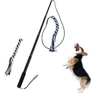 Interactive Dog Tug Toy
