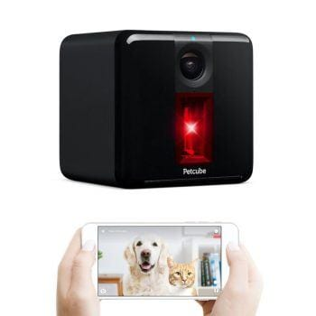 Petcube Play Wi-Fi Pet Camera review