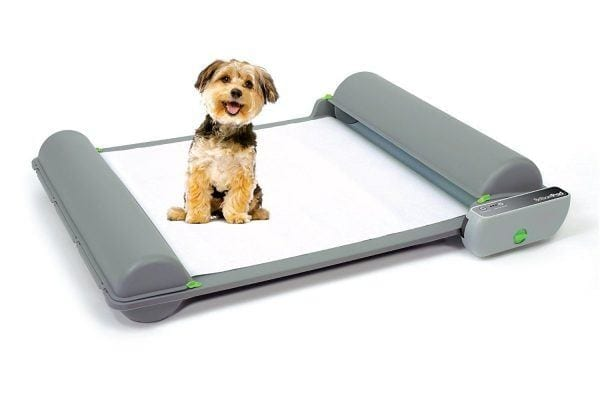 BrilliantPad Self-Cleaning, Automatic Indoor Dog Potty Review