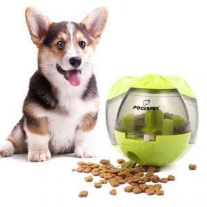 focuspet iq treat ball