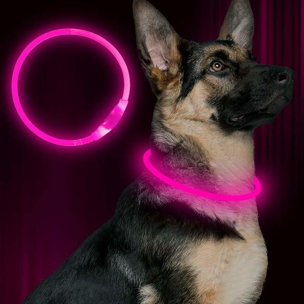 BSEEN LED Dog Collar - TOP-17 LED Dog Collars in 2019