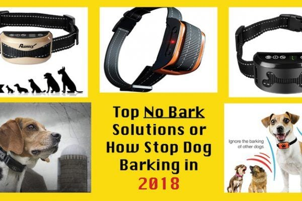 best stop dog barking collars