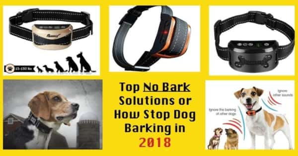 Best Stop Barking Collars of 2019: Personally Reviewed and Tested!