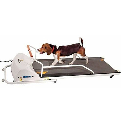PetRun PR720F Dog Treadmill  - Best Dog Treadmills Reviewed in 2019: for Small, Medium and Large Dogs