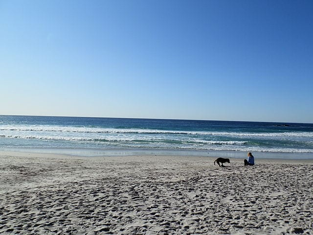 dog beach at Carmel-by-the-Sea