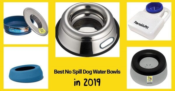 list of no spill dog water bowls