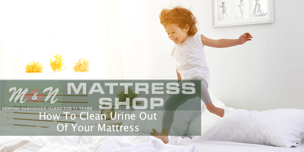clean-urine-off-your-mattress