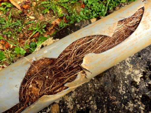 Drainage System Blockage that could be fixed with a proper perimeter drainage work